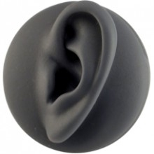 Anatomic Display Ear-L